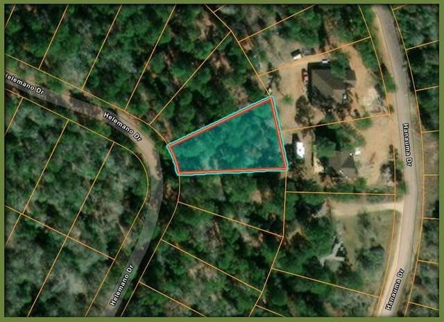 217 Helemano Dr, Bastrop, TX 78602 (#8253770) :: Papasan Real Estate Team @ Keller Williams Realty