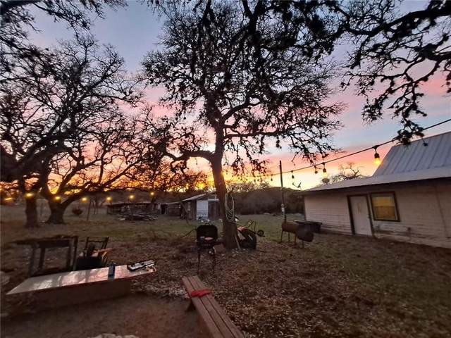 600 Dry Creek Run, Blanco, TX 78606 (#8261217) :: Zina & Co. Real Estate