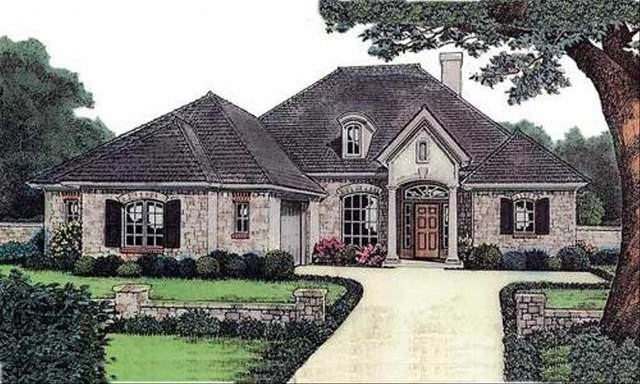 225 Live Oak St, Gonzales, TX 78629 (#8278111) :: The Heyl Group at Keller Williams