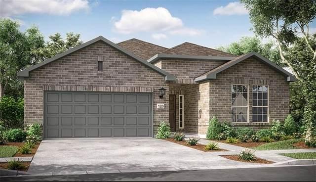 231 Trailing Lantana Ln, San Marcos, TX 78666 (#8278343) :: Papasan Real Estate Team @ Keller Williams Realty