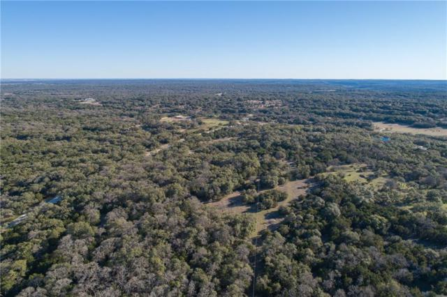 000 Pavo Springs Trl, Driftwood, TX 78619 (#8284898) :: Realty Executives - Town & Country