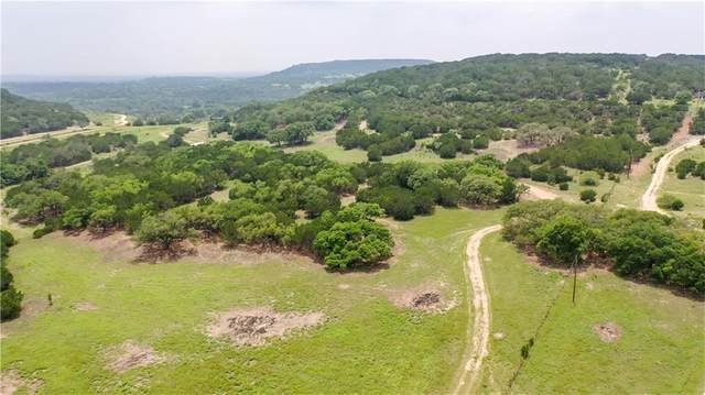 1170 County Road 335, Burnet, TX 78611 (#8303690) :: Realty Executives - Town & Country