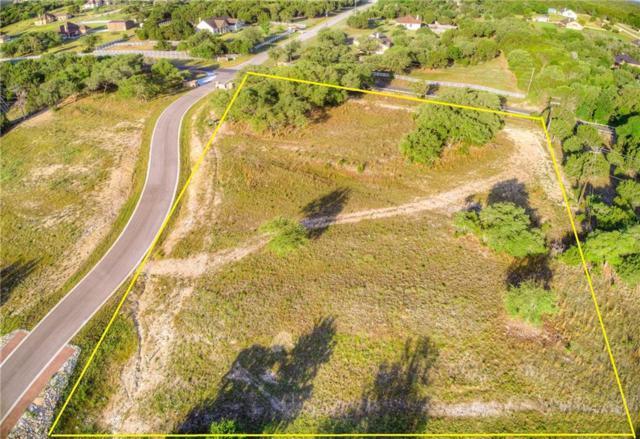 101 Saddle Ln, Liberty Hill, TX 78642 (#8328631) :: Ana Luxury Homes
