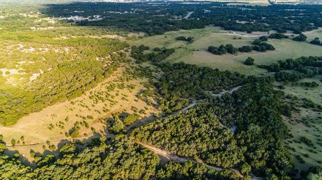 Tract D County Road 281, Leander, TX 78641 (#8332075) :: Green City Realty