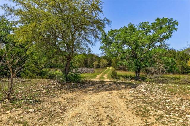 TBD County Road 236, Liberty Hill, TX 78642 (#8340449) :: RE/MAX IDEAL REALTY