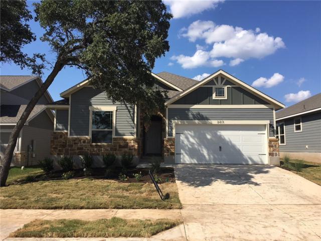 205 Trellis Blvd, Leander, TX 78641 (#8358220) :: Amanda Ponce Real Estate Team