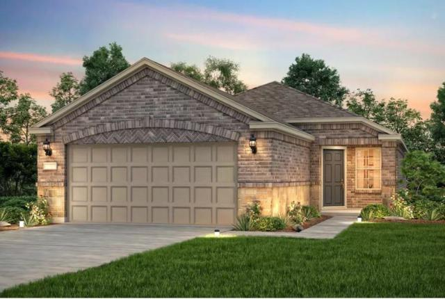 407 Rockport St, Georgetown, TX 78633 (#8380414) :: Realty Executives - Town & Country