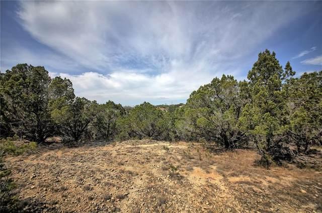 20901 Mohawk Dr, Lago Vista, TX 78645 (#8390448) :: Zina & Co. Real Estate