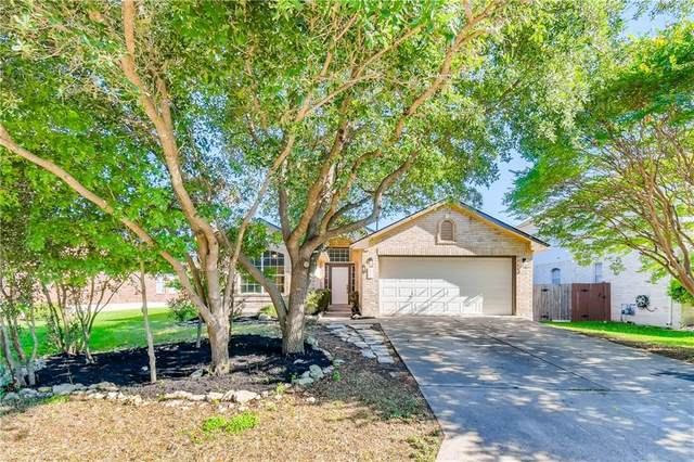807 Meadow View Dr, Leander, TX 78641 (#8408048) :: Realty Executives - Town & Country