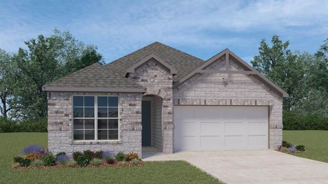 316 Peace Pipe Way, Georgetown, TX 78628 (#8415870) :: 12 Points Group