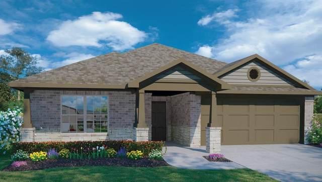 1002 Coolridge Ct, Hutto, TX 78634 (#8419776) :: Watters International