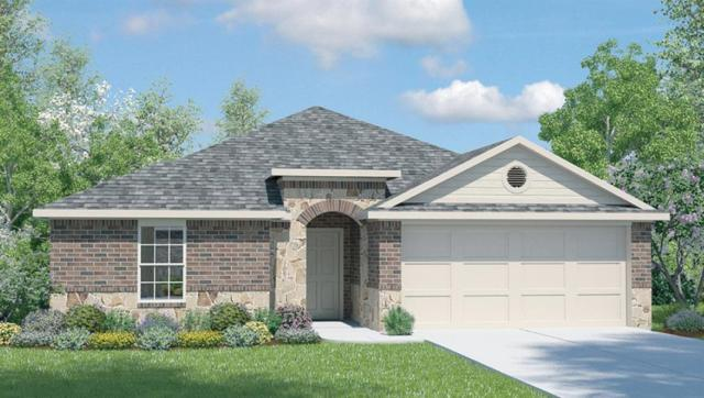 213 Rusk Bluff Ave, Leander, TX 78641 (#8433860) :: The Perry Henderson Group at Berkshire Hathaway Texas Realty