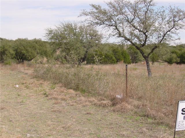 2205 W Fitzhugh Rd, Dripping Springs, TX 78620 (#8436264) :: Elite Texas Properties
