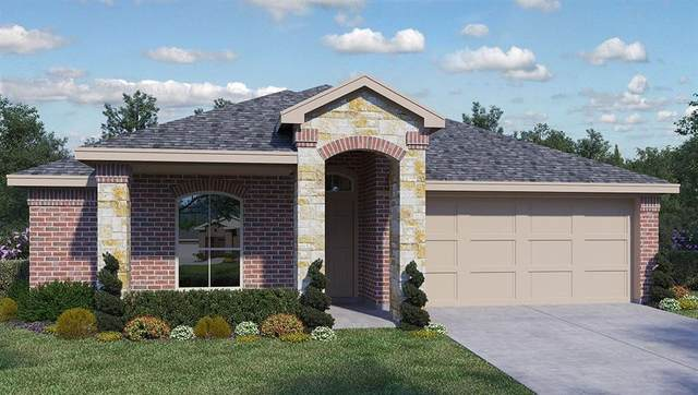 137 Empress Tree Dr, Leander, TX 78641 (#8441983) :: The Perry Henderson Group at Berkshire Hathaway Texas Realty