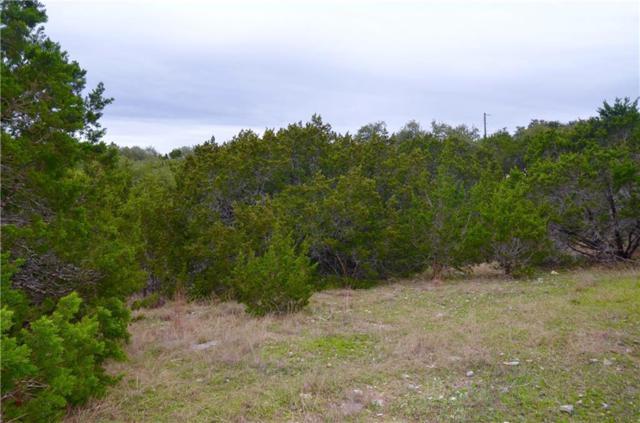 22314 Briarcliff Dr, Spicewood, TX 78669 (#8478449) :: Elite Texas Properties