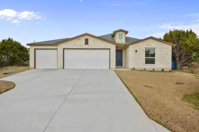 21206 Winslow Cv, Lago Vista, TX 78645 (#8486885) :: The Perry Henderson Group at Berkshire Hathaway Texas Realty