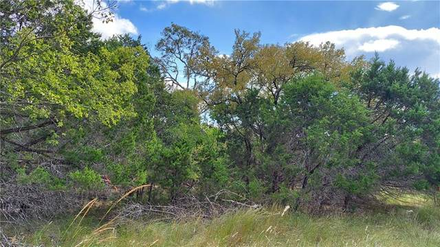 TBD Golf Crest Dr, Wimberley, TX 78676 (MLS #8499408) :: Green Residential