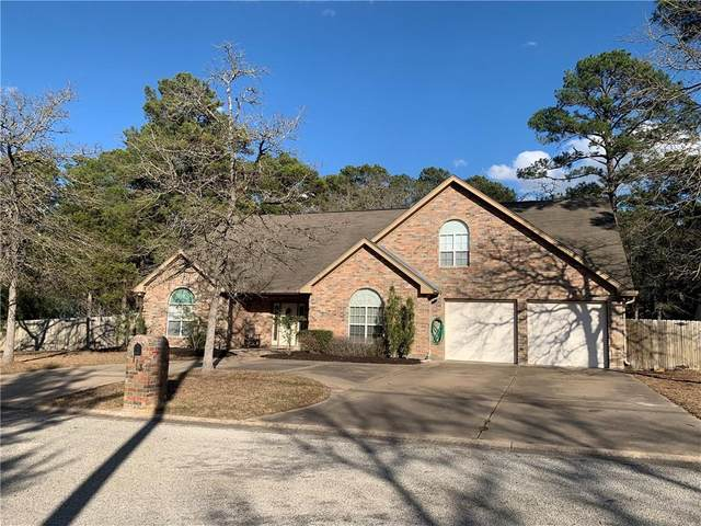 113 Pine View Loop, Bastrop, TX 78602 (#8504761) :: Zina & Co. Real Estate