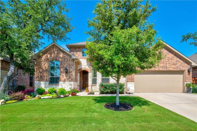 3865 Skyview Way, Round Rock, TX 78681 (#8508264) :: Ana Luxury Homes