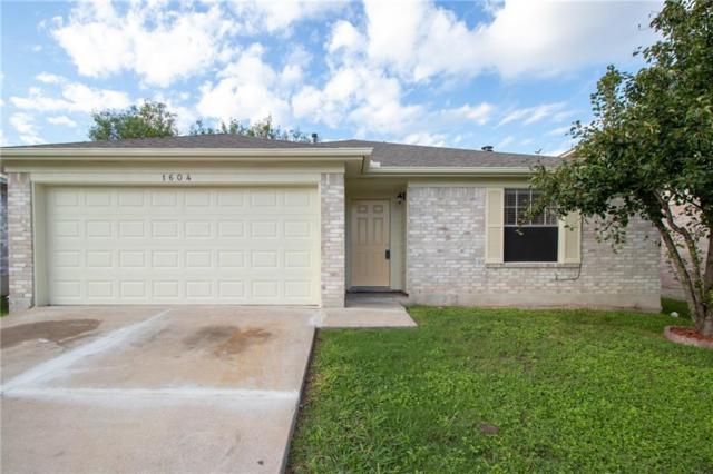 1604 Wild Orchard Dr, Pflugerville, TX 78660 (#8513242) :: Watters International