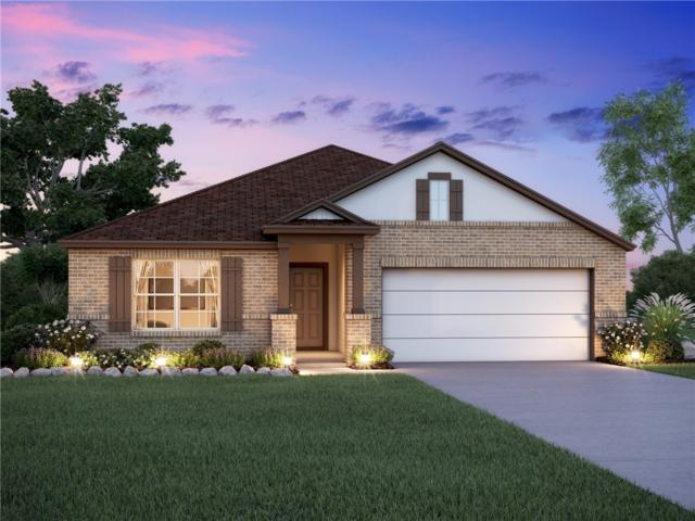 213 Falling Star, Georgetown, TX 78628 (#8513782) :: Ana Luxury Homes