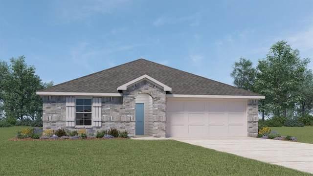 925 Nodding Nixie, Seguin, TX 78155 (#8535019) :: Papasan Real Estate Team @ Keller Williams Realty
