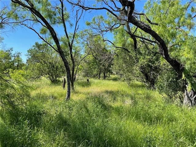 117 Creekside Trl, Spicewood, TX 78669 (#8546621) :: Papasan Real Estate Team @ Keller Williams Realty