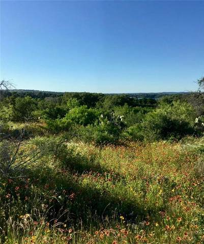 165 Mels Rd, Spicewood, TX 78669 (MLS #8548400) :: Vista Real Estate