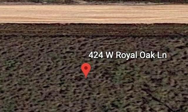 424 West Royal Oak Ln, Rockport, TX 78382 (MLS #8560824) :: Brautigan Realty