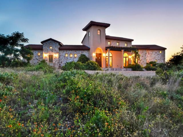 156 Via Francesco, Florence, TX 76527 (#8582272) :: The Perry Henderson Group at Berkshire Hathaway Texas Realty