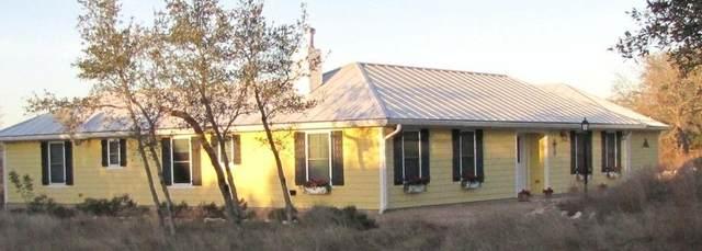 733 Altwein Rd, Blanco, TX 78606 (#8589991) :: Papasan Real Estate Team @ Keller Williams Realty