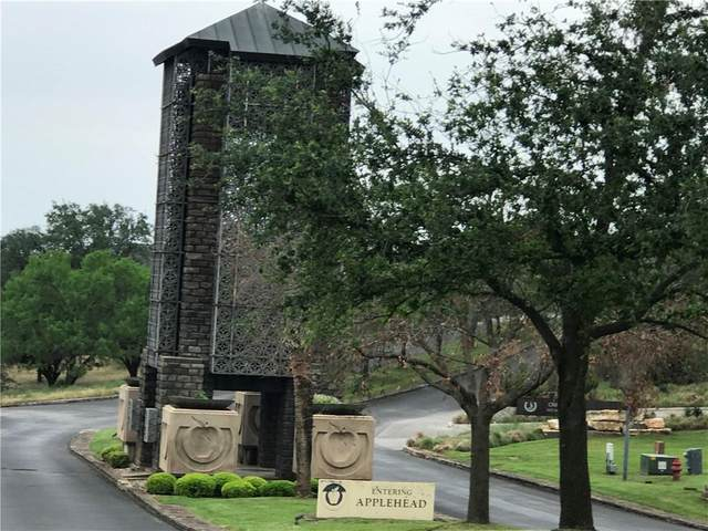 209 Nichola Gay, Horseshoe Bay, TX 78657 (#8620357) :: The Perry Henderson Group at Berkshire Hathaway Texas Realty