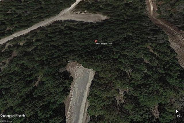8415 Angus Trl, Lago Vista, TX 78645 (#8633420) :: The ZinaSells Group