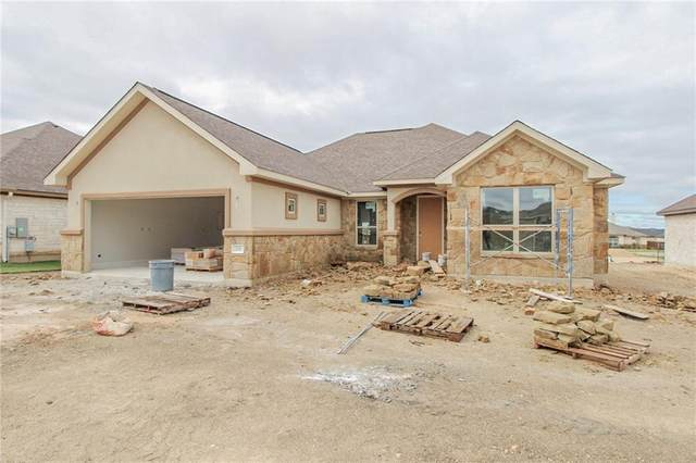 124 Terry Meadow Ln, Jarrell, TX 76537 (MLS #8658303) :: Brautigan Realty