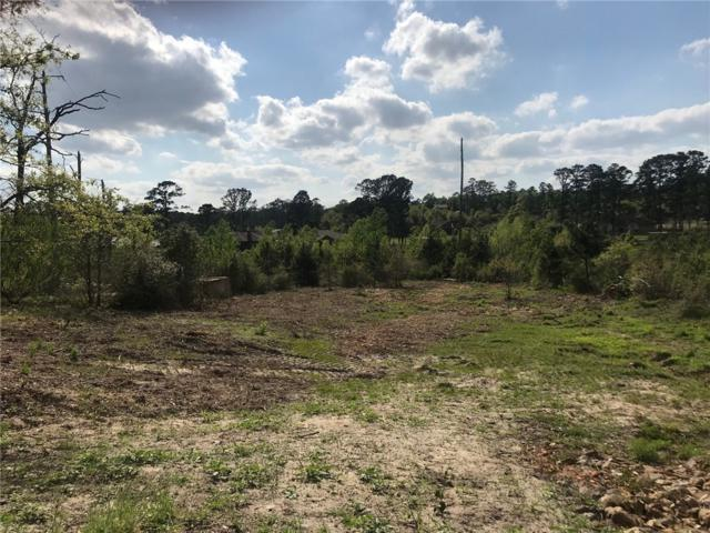 Lot 758 Manawianui Dr, Bastrop, TX 78602 (#8658477) :: The Heyl Group at Keller Williams