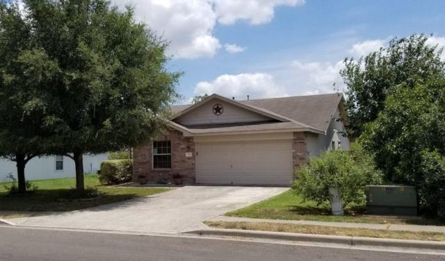 293 Indian Paintbrush Dr, Kyle, TX 78640 (#8674537) :: 12 Points Group