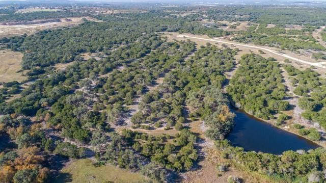 Lot 19 Rain Lily Ct, Burnet, TX 78611 (#8675252) :: The Perry Henderson Group at Berkshire Hathaway Texas Realty