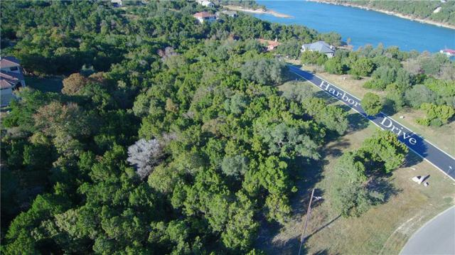 30B Harbor Dr, Jonestown, TX 78645 (#8688144) :: The Perry Henderson Group at Berkshire Hathaway Texas Realty