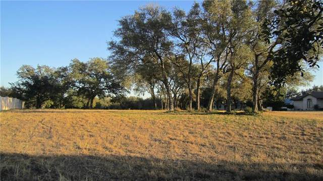 26309 Countryside Dr, Spicewood, TX 78669 (#8701515) :: The Perry Henderson Group at Berkshire Hathaway Texas Realty