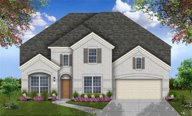 20313 Thumper Jack Ct, Pflugerville, TX 78660 (#8706260) :: Realty Executives - Town & Country