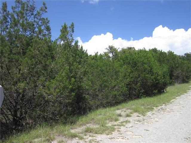 20002 Calhoun Ave, Lago Vista, TX 78645 (#8711135) :: Papasan Real Estate Team @ Keller Williams Realty