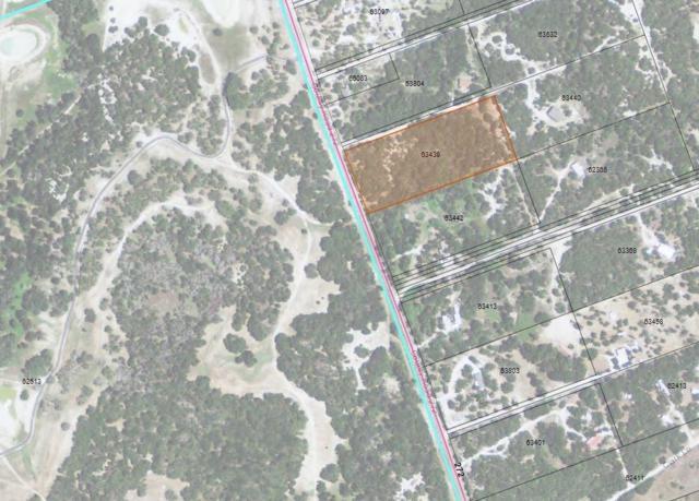 TBD County Rd 272, Bertram, TX 78605 (#8716492) :: The ZinaSells Group