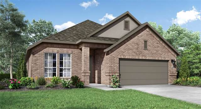 1813 Arapaho Mountain Pass, Leander, TX 78641 (#8716570) :: Zina & Co. Real Estate