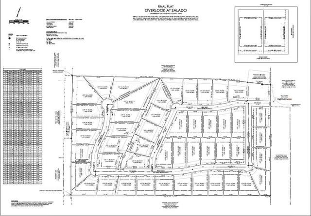 36 Inka Rd, Salado, TX 76517 (#8718542) :: Papasan Real Estate Team @ Keller Williams Realty