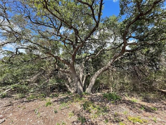 12321 Eagle Nest Rd, Salado, TX 76571 (#8729339) :: Papasan Real Estate Team @ Keller Williams Realty