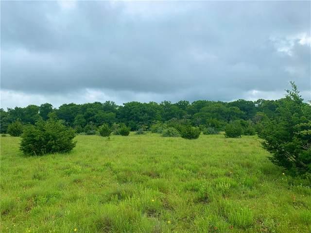 Tract 1 County Rd 103, Burnet, TX 78611 (#8730691) :: Papasan Real Estate Team @ Keller Williams Realty