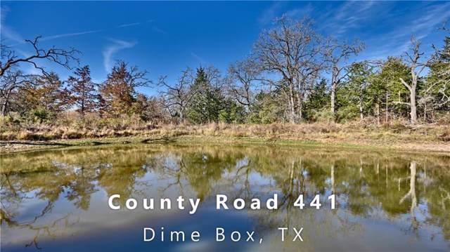 1250 County Road 441, Dime Box, TX 77853 (#8730888) :: Watters International