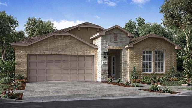 5137 Cornetto Blfs, Round Rock, TX 78665 (#8754410) :: Watters International