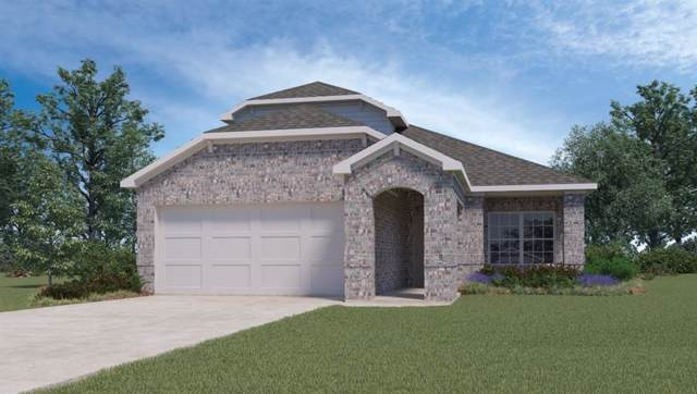 120 Stellamar Dr, Hutto, TX 78634 (#8754636) :: Lucido Global