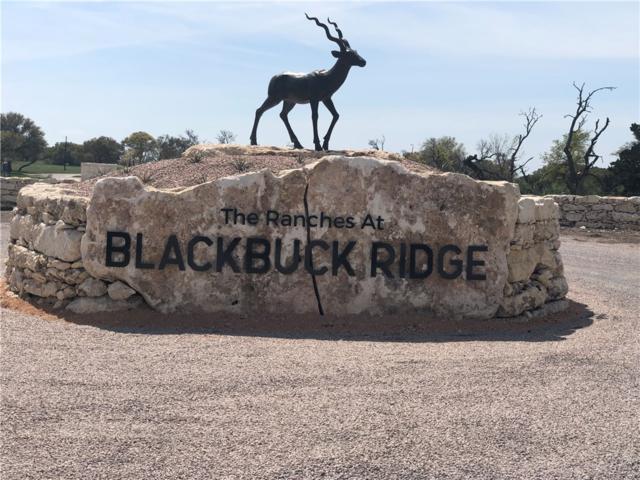 431 South Waterbuck Way, Lampasas, TX 76550 (#8761912) :: Realty Executives - Town & Country